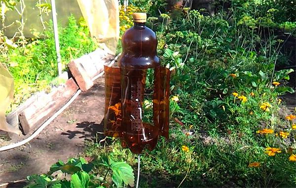 Пример вертушки, сделанной из пластиковой бутылки и отпугивающей кротов на участке.