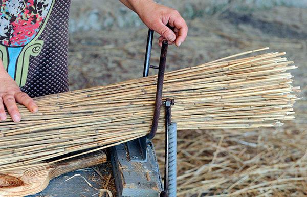Хотя стебли камыша и считаются народным средством отпугивания кротов, однако на практике помогают они очень редко.