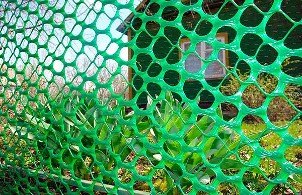 Можно по периметру оградить участок от кротов с помощью сетки.
