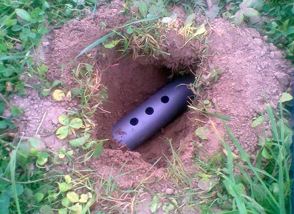 Самодельная кротоловка-труба, имеющая сверху несколько смотровых отверстий.