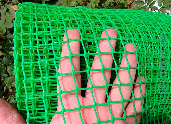 Огородить участок от кротов по периметру можно мелкой пластиковой сеткой, вкопанной в землю на глубину не менее 80 см.