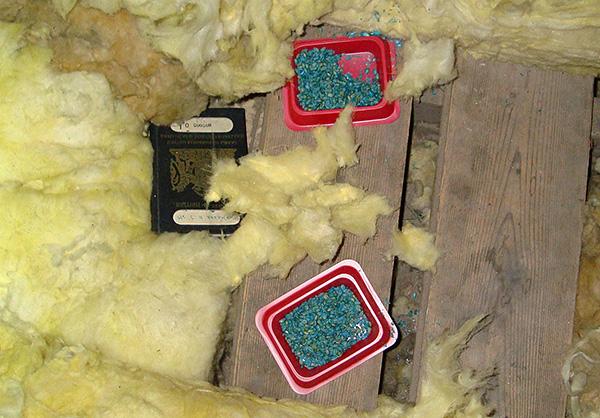 Крысиный яд является эффективным средством борьбы с грызунами, но имеет и ряд существенных недостатков...