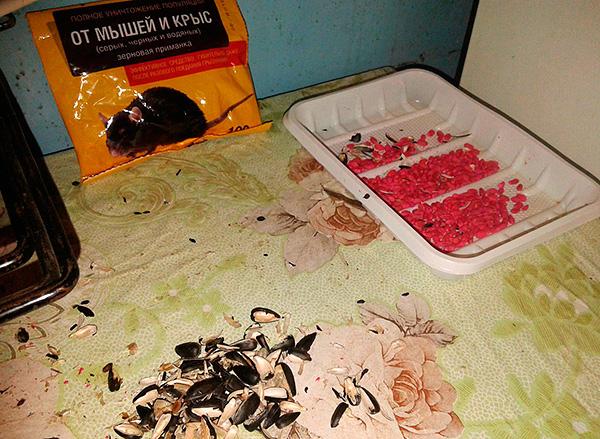 Крысиный яд уже долгое время заслуженно пользуется популярностью в деле уничтожения грызунов.