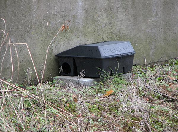 На фото показан защитный контейнер, позволяющий исключить доступ к отраве кого бы то ни было, кроме крыс и мышей.