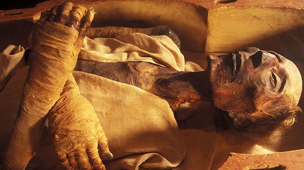 На фотографии показана мумия (тело человека для предотвращения разложения подверглось бальзамированию).
