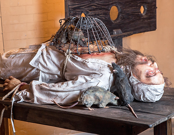 В Средневековье были довольно распространены пытки с использованием крыс...