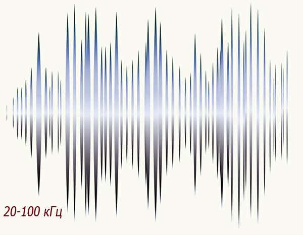 Охват диапазона частот от 20 кГц до 100 кГц является вполне достаточным для эффективного воздействия на крыс и мышей.