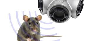 Применение ультразвука против крыс и мышей