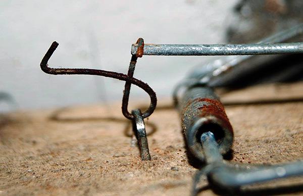 Нередко кротов ловят с помощью обычных мышеловок.