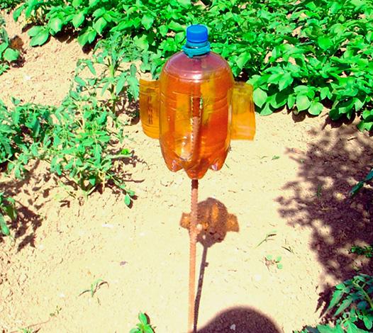 Вертушку для отпугивания кротов можно сделать и из обычной пластиковой бутылки.