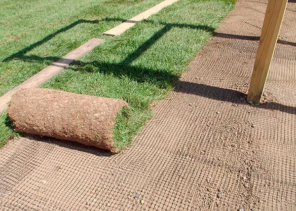 Пример укладки специальной сетки от кротов на газоне.