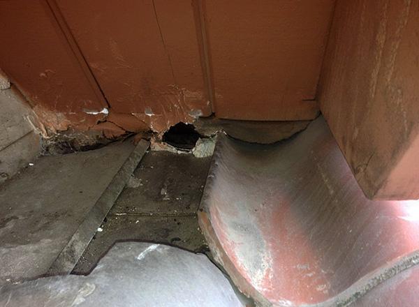 Отравленные крысы в большинстве случаев погибают вне помещения, а не за стенами или под полом.