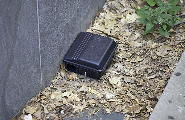 Для безопасного применения отравы размещать ее желательно в специальных приманочных станциях.