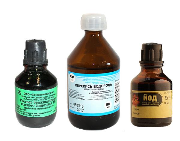 Если вас укусил грызун, нужно немедленно промыть рану водой и воспользоваться антисептическим средством (йодом, перекисью водорода или, например, зеленкой).