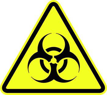 Укус крысы может быть чреват заражением серьезными инфекционными заболеваниями...