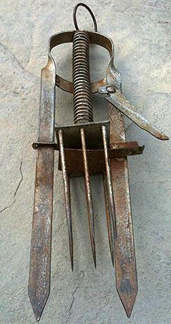 Гарпунный капкан (плунжерный) убивает крота, протыкая его тело острыми спицами.