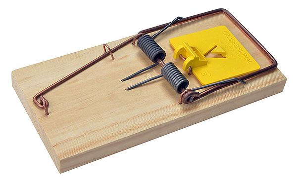 Классическая деревянная крысоловка-давилка.