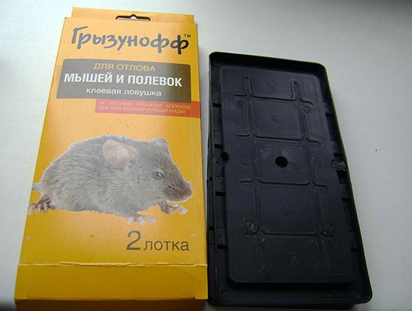 Клеевая ловушка Грызунофф для отлова мышей и полевок.